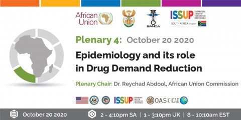 Plenary 4 - Africa Virtual Conference 2020